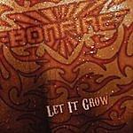 Bonfire Let It Grow