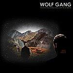 Wolfgang The King And All Of His Men [Joe Goddard Remix]