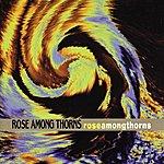 Rose Among Thorns Rose Among Thorns