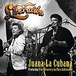 Liberación Juana La Cubana