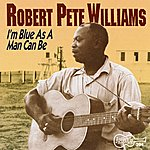 Robert Pete Williams Vol. 1 - I'm Blue As A Man Can Be