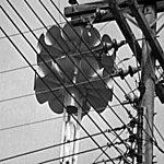 Signal Electrique Perce-Oreille V2.2