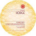 Hodge Conjecture / Conjecture (Hackman Remix)