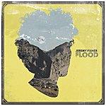 Jeremy Fisher Flood