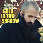 Cover Art: Gold In The Shadow