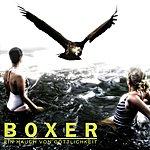 Boxer Ein Hauch Von Göttlichkeit