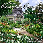 David Sun In A Country Garden (The Floral Orchestra)