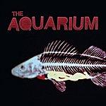 Aquarium Group The Aquarium
