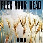 Void Flex Your Head
