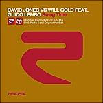 David Jones Swing Time