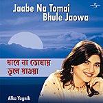 Alka Yagnik Jaabe Na Tomai Bhule Jaowa
