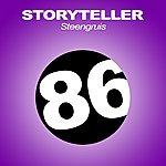 Storyteller Steengruis