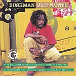 Bushman Most Wanted