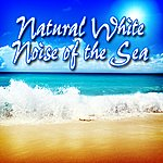 Sounds Of Life Natural White Noise Of The Sea: Best Nature Sounds For Sleeping, Stress Relief, Relaxation And Sound Therapy