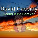 David Cassidy Could It Be Forever