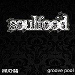 Soul Food Groove Pool