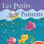 Rémi Guichard Les Petits Poissons
