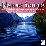 Nature Sounds Nature Sounds For Sleep And Relaxation: Ambient Nature Sound Collection. Relax Sound Effect Series Gallery For Sleep