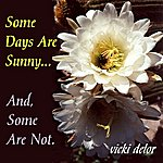 Vicki Delor Some Days Are Sunny And Some Are Not