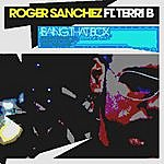Roger Sanchez Bang That Box (Feat. Terri B)
