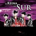 Los Cuates De Sinaloa La Reina Del Sur