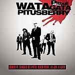 Pitbull Watagatapitusberry