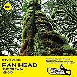 Pan Head The Dream / 13-00-