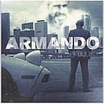 Pitbull Armando