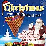 Mato Grosso Christmas - Temi Per Flauto DI Pan