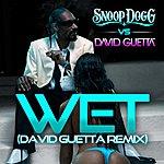 Snoop Dogg Wet (Snoop Dogg Vs. David Guetta) (Remix)