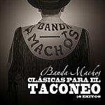 Banda Machos Clasicas Para El Taconeo