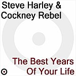 Steve Harley The Best Years Of Your Lives