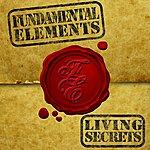 Fundamental Elements Living Secrets