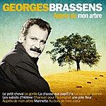 Georges Brassens Auprès De Mon Arbre