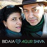 Bidaia Agur Shiva