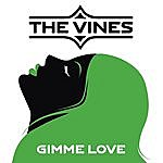 The Vines Gimme Love