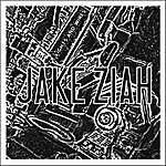 Jake Ziah Lights & Wires