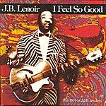J.B. Lenoir I Feel So Good, The 1951-54 J.O.B.Sessions