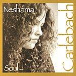 Neshama Carlebach Soul