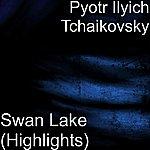 Pyotr Ilyich Tchaikovsky Swan Lake (Highlights)