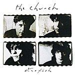 The Church Starfish