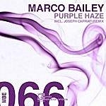Marco Bailey Purple Haze