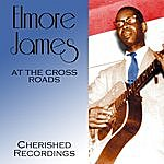 Elmore James At The Cross Roads