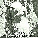 Buben Star German Polar Bear