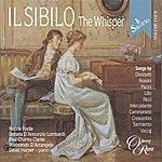 Ildebrando d'Arcangelo Salotto (IL), Vol. 4: IL Sibilo (The Whisper)