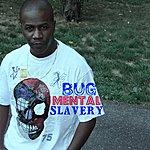 Bug Mental Slavery