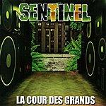 Sentinel La Cour Des Grands