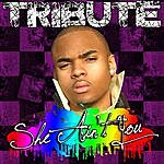 The Singles She Ain't You (Chris Brown Tribute)