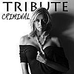 The Singles Criminal (Britney Spears Tribute)