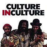 Culture Culture In Culture
